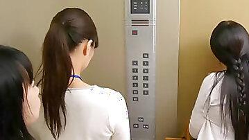 Japanese female man meat fellatio